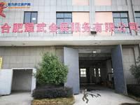 庐江工投产业园A1栋1715平米600万厂房