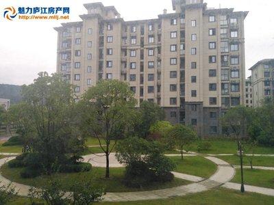 城东碧桂园边户110平方黄金楼层3房2厅1卫 房东低价75万 看房密码