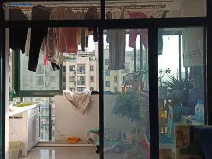 城南小学庐江四中双学区 精品楼层视野好可看房