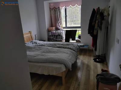 乐天家园 中装房 12000一年 价格便宜