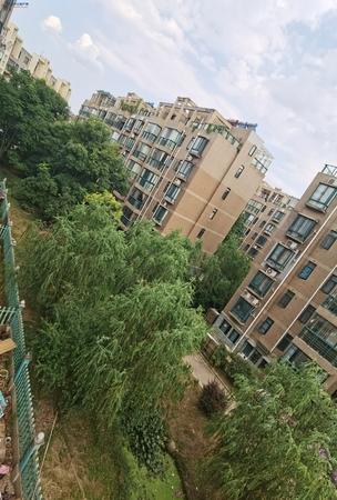 众发名城 精装雅观三房 好楼层东边户 静谧住家首选 看房方便