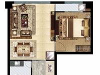 出售其他小区1室1厅1卫47.48平米20.3434万住宅