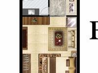 出售其他小区1室1厅1卫31平米13.6508万住宅