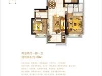 碧桂园西江樾,城西价值最大区域,二中旁,庐江未来CBD中心,建议入手