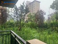 出售碧桂园送前后200平方大院子3室2厅2卫120平米105万住宅