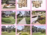 出售碧桂园 钻石湾3室2厅1卫108平米88万住宅