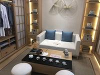 安德利商圈,天润公馆商业住宅,一室一厅,自由装修,随便改造,一站式服务