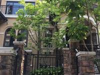 富人区,滟澜山别墅,一至三层,送地下一层,1.35万一平,看房方便,直接更名