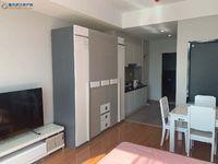 出售湖山壹品1室1厅1卫公寓有48平米至78平米价格在32万起万住宅